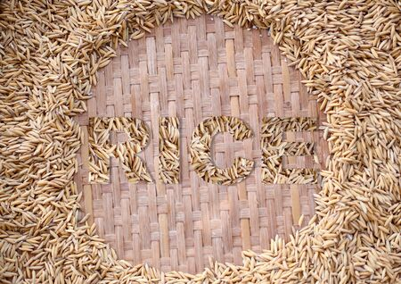 jasmine rice: Paddy Jasmine rice on weave basket background with word rice