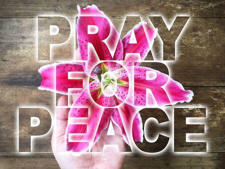 woman hand holding pink lily with word PRAY FOR PEACE