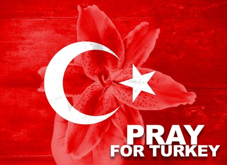 hand holding flower: Turkey flag with hand holding flower with word Pray for Turkey