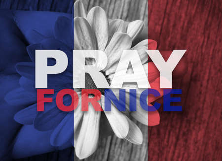 hand holding flower: France national flag with hand holding flower with word Pray for NICE Stock Photo