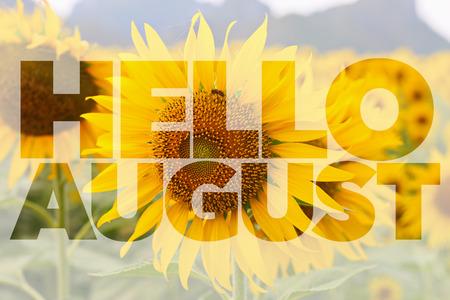 Hallo augustus woord op zonnebloem achtergrond