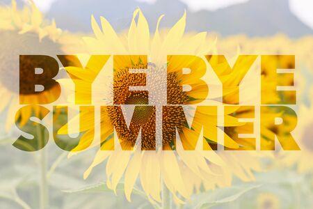 bye: Bye Bye Summer word on sunflower background