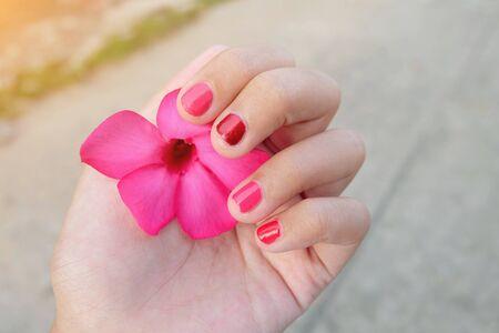 mock azalea: hand holding pink flower