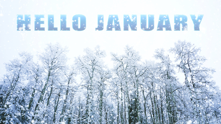 words Hello January on winter background