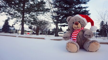 a cute Christmas teddy bear sitting on the ground with snow vintage style