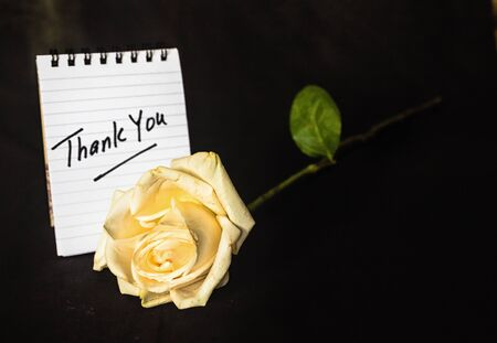 favour: A Thank You note as an appreciation for favour given. Stock Photo