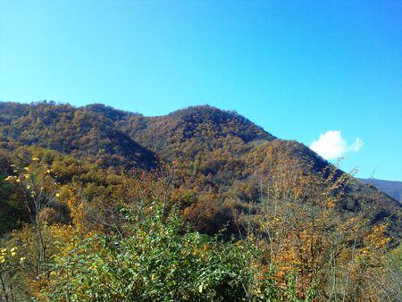 cima montagna: Mountain top