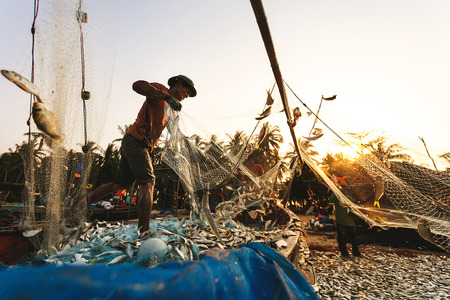 commercial fisheries: Coastal fishing are helping to take the fishs out of the nets, at Nakhon Si Thammarat province Thailand on March 20, 2015
