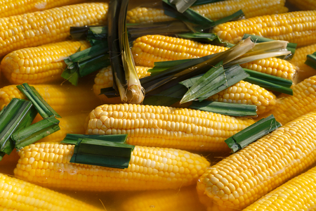 pandan: Fresh Corn boil and pandan Stock Photo