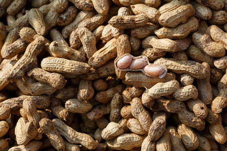 good quality: Peanut boil delicious good quality Stock Photo