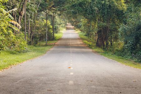 masuria: The Road in forest at Thailand