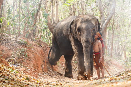 mahout: Relationship a man, mahout  Of elephant. Parenting with Love. atmosphere with smog Stock Photo