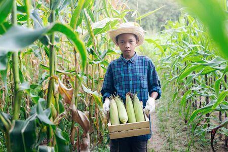 Young farmer Showing organic corn on the farm