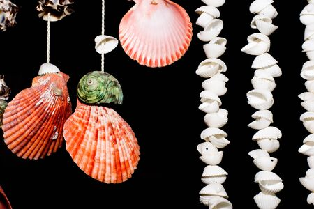 This is hanging shell for decorate my home