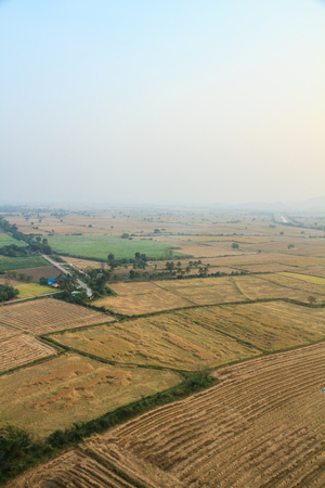 Grandi campi di vista birdeye, Kanchanaburi, in Thailandia.
