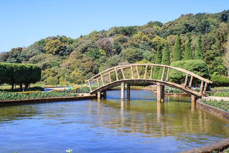 Wooden bridge in park Doi Inthanon, Chiang Mai, Thailand. photo