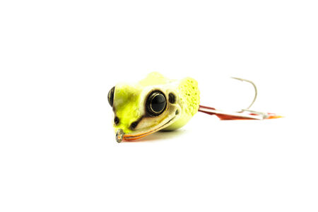 entrap: Artificial bait for fishing on white background.