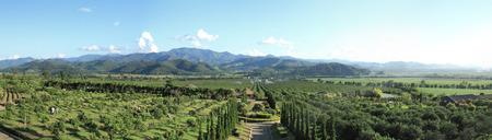 fang: Panorama: Tanatorn orange plantation, Fang, Chiang mai, Thailand.