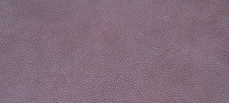 leather skin: Genuine leather skin texture color brown. Stock Photo