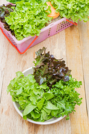 butter head: Vegetables for salad consisting of Cos lettuce, Butter head, Red oak, Green oak and Coral in pink basket on wood table. Stock Photo