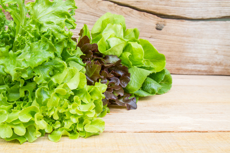 butter head: Vegetables for salad consisting of Cos lettuce, Butter head, Red oak, Green oak and Coral on wood table.