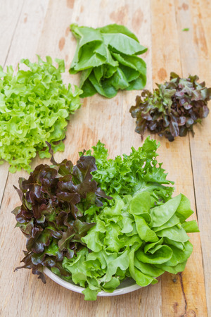 butter head: Vegetables for salad consisting of Cos lettuce, Butter head, Red oak, Green oak and Coral on the plate on a wooden table.