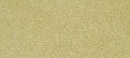 leather skin: Genuine leather skin texture color green. Stock Photo