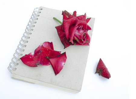 worse: Wilted flowers on old notebook. The concept of love notes are worse.