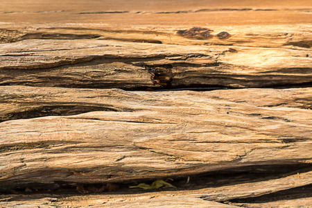 wood textures: Wood textures Cracked pattern background.