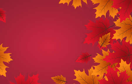 Vector leafs  background with red, orange,  and yellow falling autumn leaves.illustration.