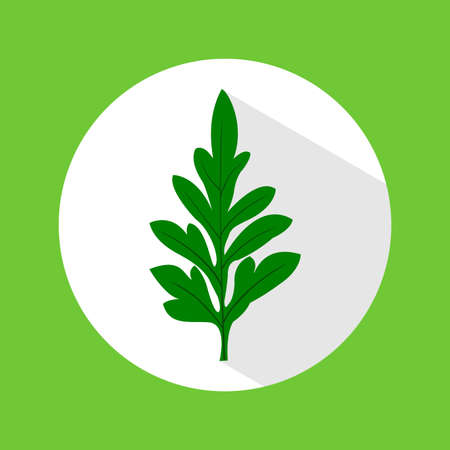 vector flat icon cosmos leaves, green, white - Vector