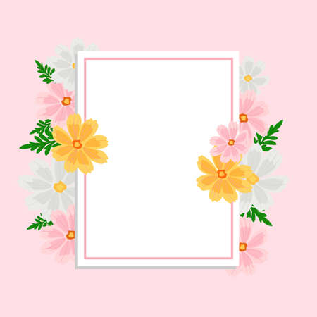 Cosmos Flower Frame Pink, natural summer field, beautifully relaxing nature. Vector illustration floral