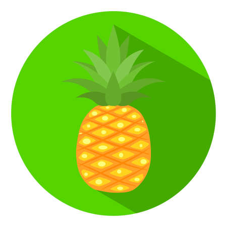 pineapple icon with long shadow on circle green background, flat design - Vector