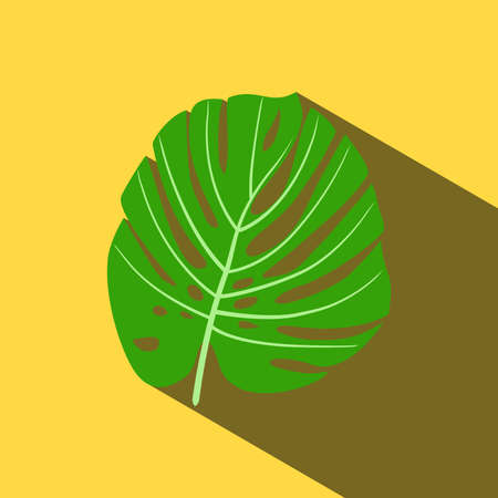 Tropical leaf of Monstera or palm plant isolated on yellow background with long shadow.-vector 矢量图像