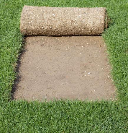 잔디에서 껍질을 벗긴 잔디 카펫 롤 스톡 콘텐츠