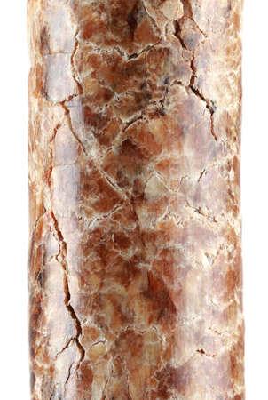 cilinder: Macro di pellet di legno singola isolato su sfondo bianco
