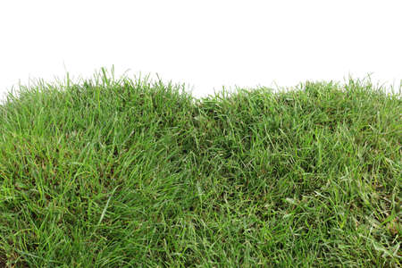 cut grass: Two Grassy Hills Isolated on White Background