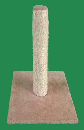 Cat Scratching Post Isolated on Green Background photo