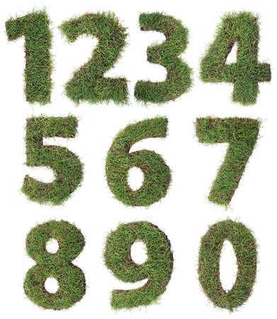 Numeri fatti di tappeto erboso erba isolato su sfondo bianco