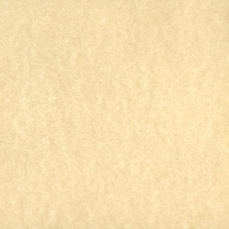 ベージュ羊皮紙紙背景テクスチャ