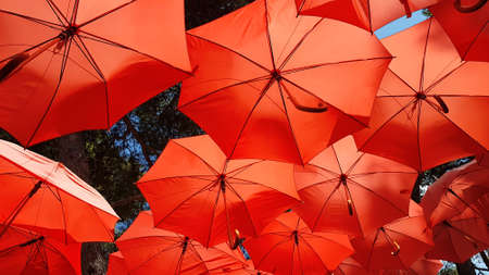 Decorative Red Parasol Sunshade Ceiling Stock Photo