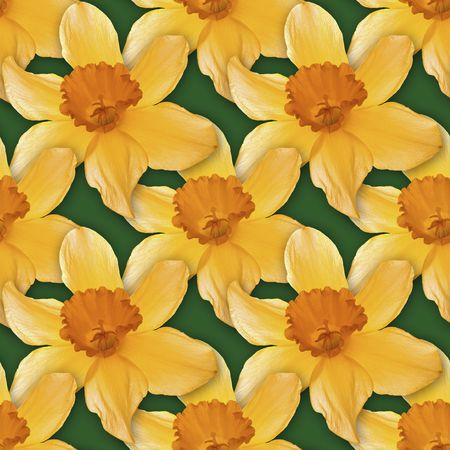 Narcissus Seamless Texture Background Pattern