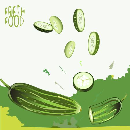 splashed: an illustration of a background of fresh cucumber, whole and sliced, splashed with juice, with a Fresh food sign