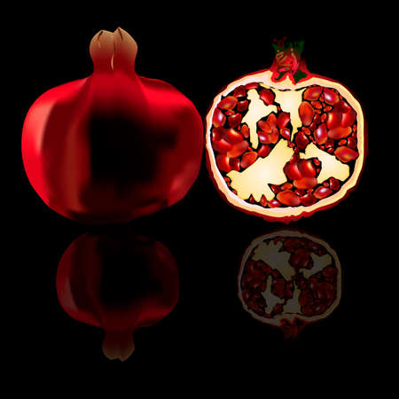 space for type: an illustration of two pomegranates: whole and a half, with seeds and details structure. With a reflection. Space for type. Illustration