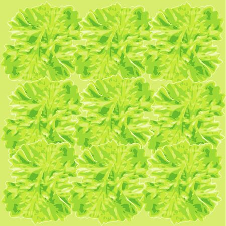 an illustration of a seamless pattern of the heads of parsley grass tops in water paint