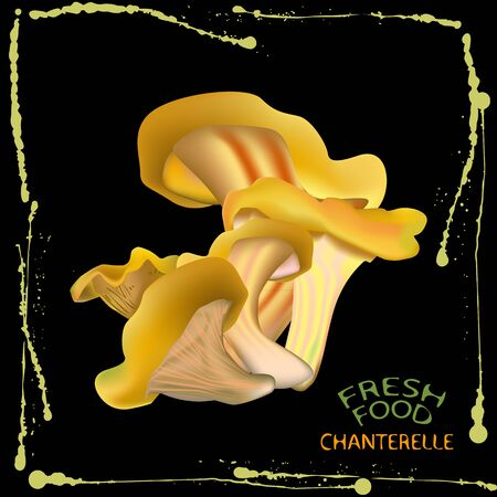 an illustration of a label of a bunch of chanterelle mushrooms, on black background with yellow ink splashes on the edges and fresh food and chanterelle signs in the bottom left corner