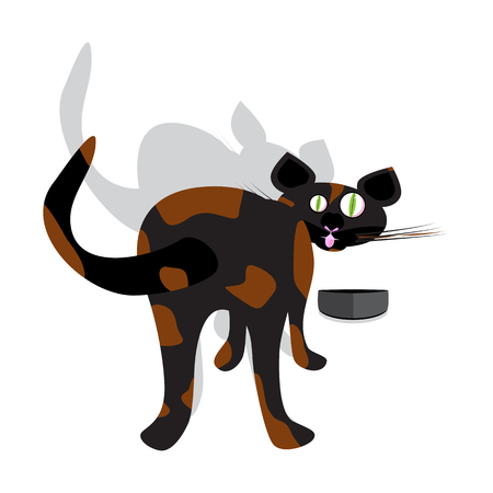 beautiful eating: a vector illustration of a funny brindle curious cat trying to eat with arched back and tail up looking to the front Illustration