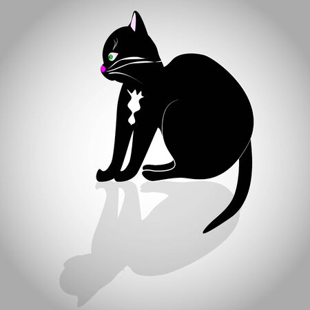 a vector illustration of a black cat with white chin, whiskers, ears and some outlines. Illustration