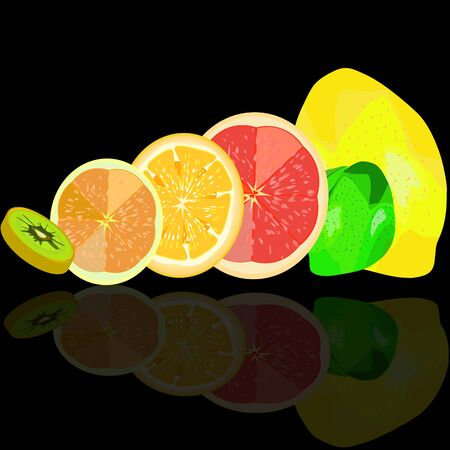 a vector illustration of whole and sliced citrus fruits and kiwi with a reflection Illustration