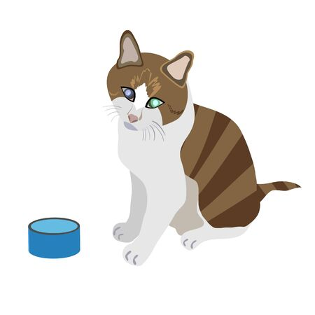 begging: vector illustration of a hungry stripey cat sitting by the empty food bowl
